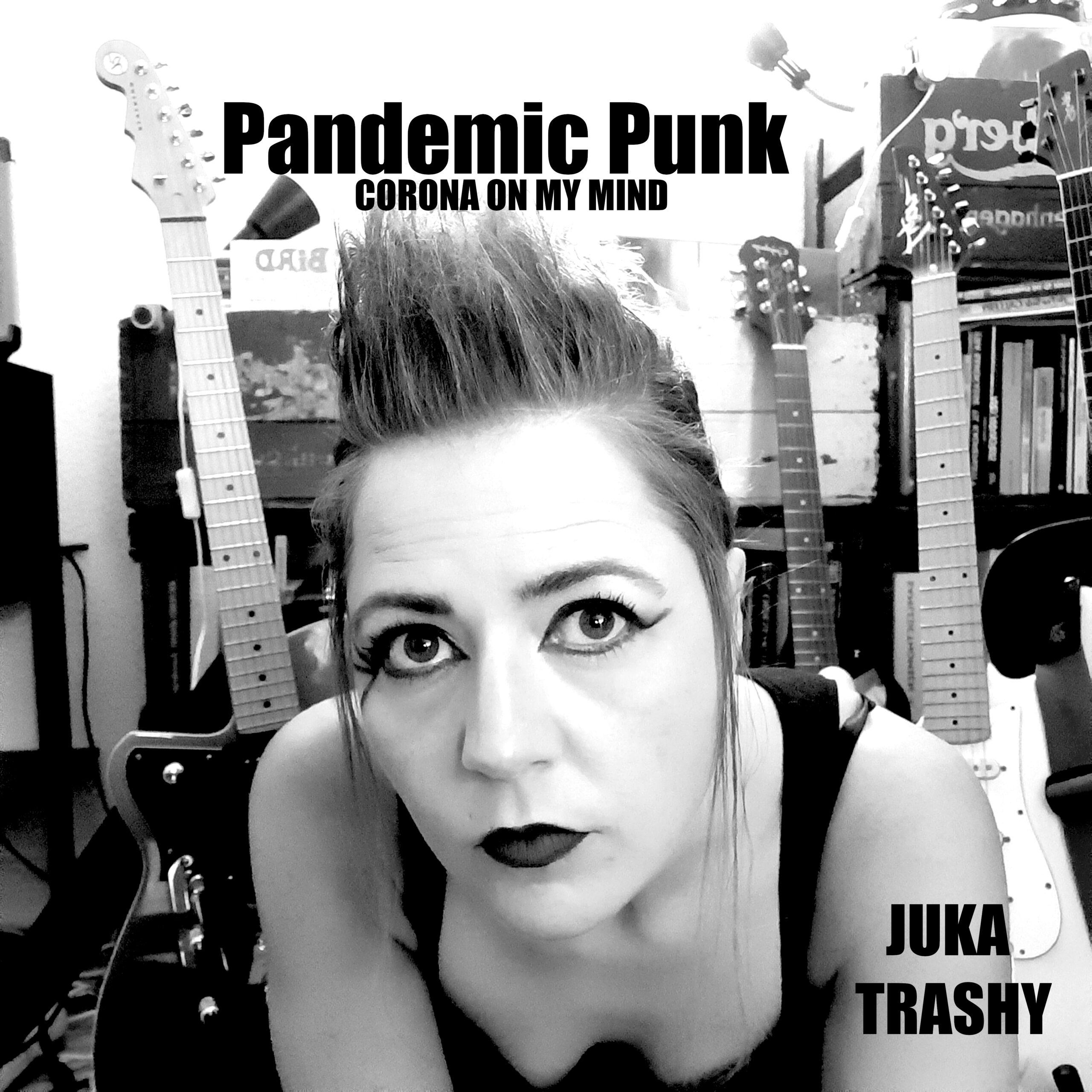 Pandemic Punk Lyrics out now!